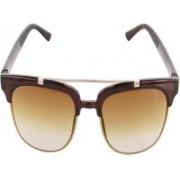 steponn rise Clubmaster Sunglasses(Brown)