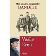 Banditii ( Editia 2017)/Vasile Ernu