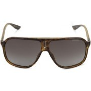 Carrera Aviator Sunglasses(Brown)