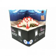 Hydor H2Show Deco Starfish (zeester) LED