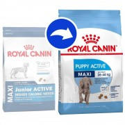 Royal Canin Size Royal Canin Maxi Puppy / Junior Active - 15 kg