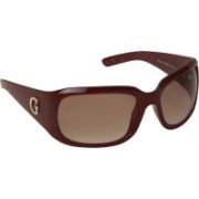 Guess Wayfarer Sunglasses(Brown)
