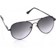 Joe Black Aviator Sunglasses(Violet, Grey)
