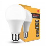 Ampoule LED Kodak Max Globe A65 15W E27 270° 4000K (1350 lumen)