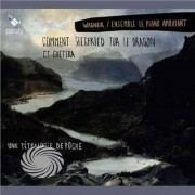 Video Delta ENSEMBLE LE PIANO AMBULAN - COMMENT SIEGFRIED TUA.. - CD