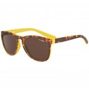 Gafas ARNETTE AN4227-239273-57 Propionato Marron Unisex