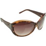 Hidesign Oval Sunglasses(Brown)