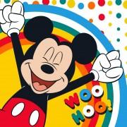 Mickey egér mágikus kéztörlő