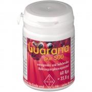 Velag Pharma GmbH Guarana pur 500