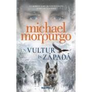 Un vultur in zapada - Michael Morpurgo