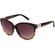 SWAROVSKI Oval Sunglasses(Violet)