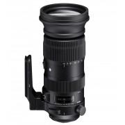 Sigma 60-600mm F4.5-6.3 DG OS HSM S MILC Teleobiettivo Attacco Nikon Nero