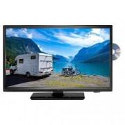 Reflexion LED TV 49.5 cm 19.5 palec Reflexion LDDW20N en.třída A (A++ - E) DVB-T2, DVB-C, DVB-S, HD ready, DVD-Player, CI+ černá