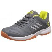 adidas Men's Baseliner 2 Visgre, Silvmt and Shosli Indoor Multisport Court Shoes - 10 UK/India (44.67 EU)