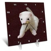 3dRose LLC 3dRose DC_17290_1 Baby Albino Ferret-Desk Clock, 6 by 6-Inch