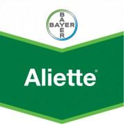 Fungicid Aliette 80 WG 6KG