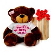 4 feet big brown teddy bear wearing Worlds Best Sister T-shirt