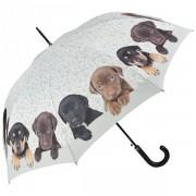 Szczeniaczki długi parasol ze skórzaną rączką