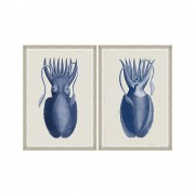 Set tablouri CUTTLEFISH ON BLUE