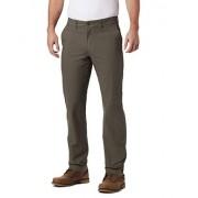 Columbia Flex ROC Pantalones de Senderismo para Hombre, Alpine Tundra, 44W x 32L