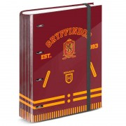 Harry Potter Gryffindor A4 cardboard with sheets