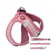 Curli Vest Harness Air-Mesh & Leash Puppy Set - XXXS - Lichtroze