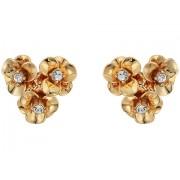 Kate Spade New York Shine On Flower Cluster Studs Earrings Gold