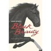 Black Beauty, Paperback
