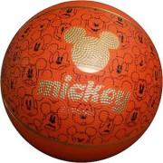 Disney Rubber Basketball