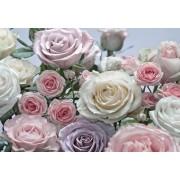 Virágok poszter 8736