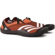 Adidas CLIMACOOL JAWPAW SLIP ON Outdoor Shoes For Men(Orange)