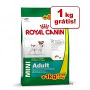 Royal Canin Mini Adult 9 kg em promoção: 8 + 1 kg grátis! - 8 + 1 kg grátis!