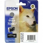 Epson T0967 Epson R2880 Grijs