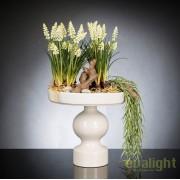 Aranjament floral design LUX MUSCARI, 30x60cm