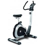 Bicicleta ergometrica BH Fitness Artic