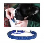 Ajustable Collar De Perro Grandes Perros Mascota Tren Cinturon Con CD Disco Mascotas Collar, Collar Tamaño: 16,5 * 16 * 2.7cm