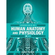 Essentials of Human Anatomy and Physiology, Paperback/James Palmer