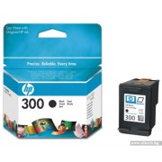 HP 300 Black Inkjet Print Cartridge (CC640EE)