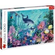 Puzzle mediul acvatic marin 1000 piese Topi Dreams