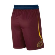 Cleveland Cavaliers Nike Icon Edition Swingman NBA-Herrenshorts - Rot