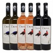 Crama Cepari, Terasele Criva, Selectie 6 Vinuri