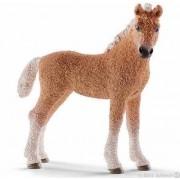 Bashkir Curly, föl (Schleich Bondgårdsdjur, Hästar 13781)