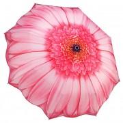 Blooming Brollies Femeile pliabile umbrelă complet automată Pink Daisy GFFPID