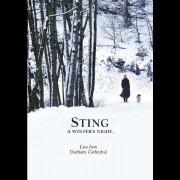 Sting - A Winter's Night (0602527253855) (2 DVD)