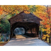 White Mountain Puzzles Albany Covered Bridge - 1000 Piece Jigsaw Puzzle