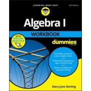 Algebra I Workbook for Dummies, Paperback