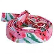 Paramise Juego de collar y correa de algodón para perro de Sandía rosa con lazo para perros grandes y pequeños, hebilla de metal de oro rosa, accesorios para mascotas, correa, XS