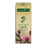 Extract Muguri Calin Plantextrakt 50ml