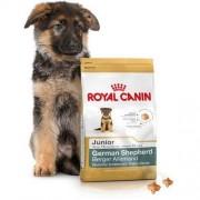ROYAL CANIN German Shepherd Junior 12kg Darmowa dostawa - 12000