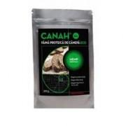 Faina de Canepa Bio 500gr Canah